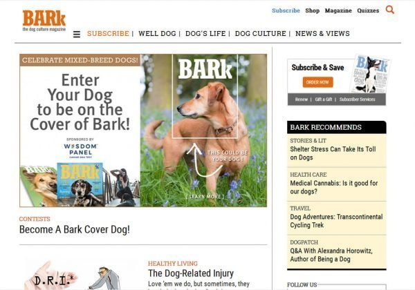 Best Dog Websites Archives - The Dog List