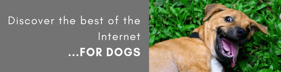The Dog List